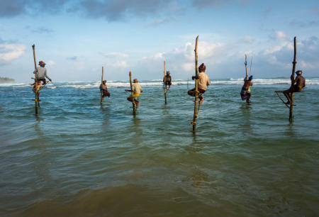 Ahangama Stilt fisherman